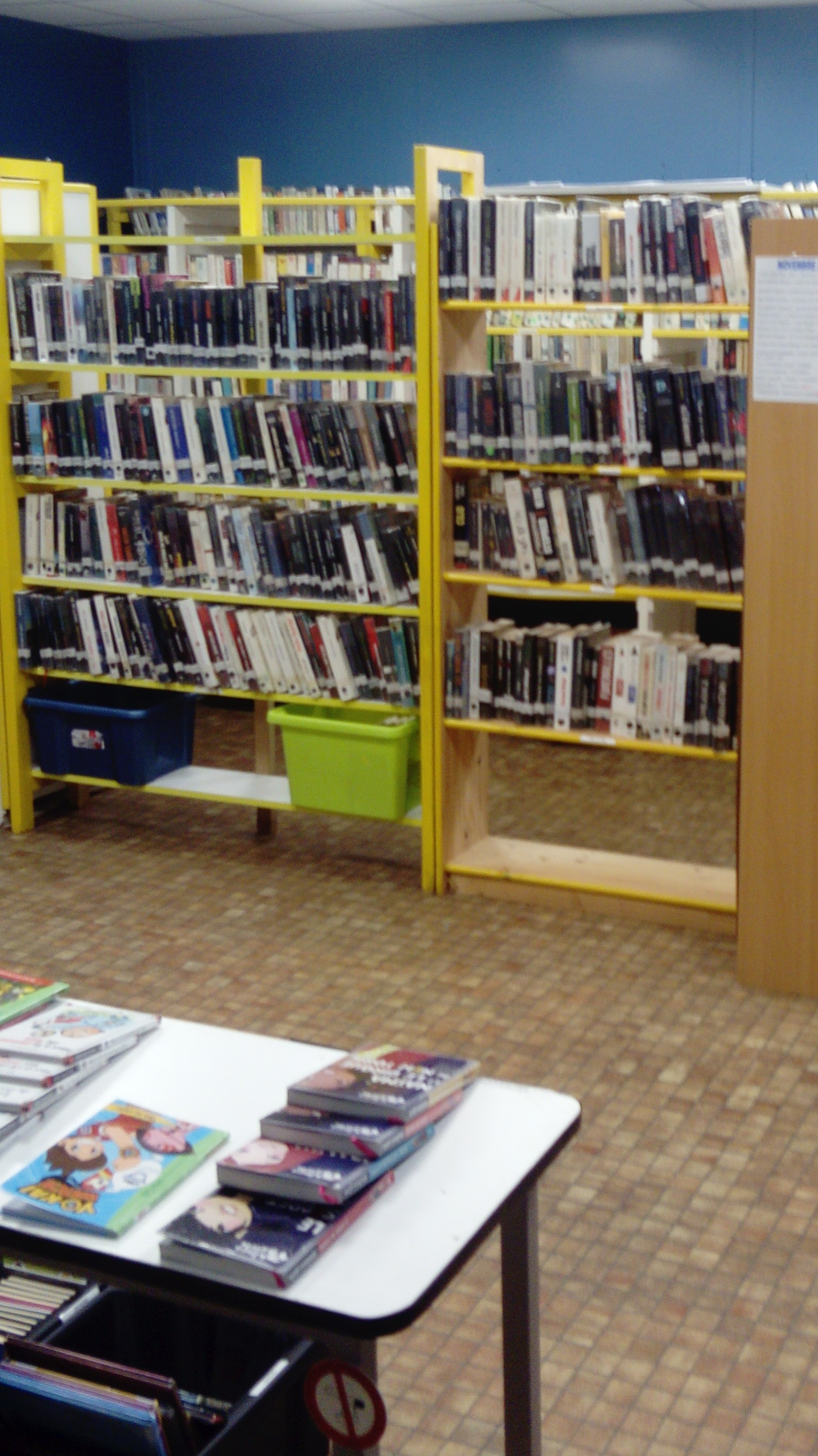 biblio interieur COPIE 2